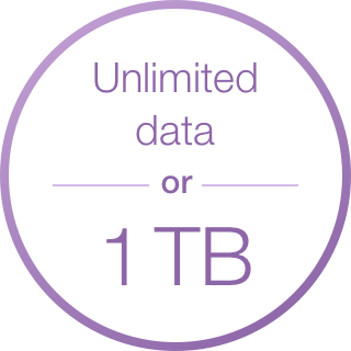 Monthly data allowance is based on selected term